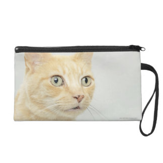 Cat with eyes open wide wristlet