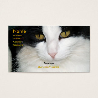 Cat with Golden Eyes Business Card