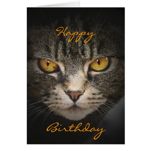 Cat with Golden Eyes Card