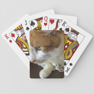 Cat with lace collar playing cards