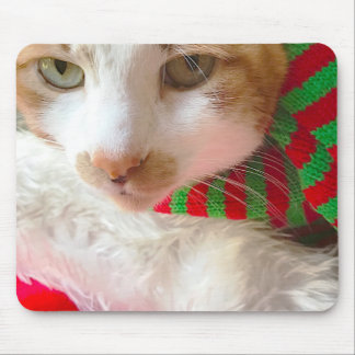 Cat with muffler and Santa hat Mouse Mat