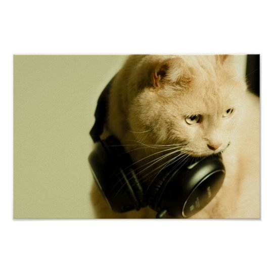 Cat with Music Headphones Value Poster Paper