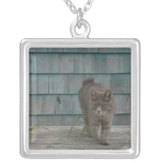 Cat with no tail silver plated necklace
