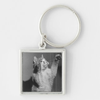 Cat with raised paws (B&W) Silver-Colored Square Key Ring