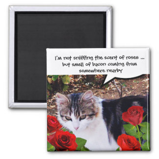 CAT WITH RED ROSES SQUARE MAGNET