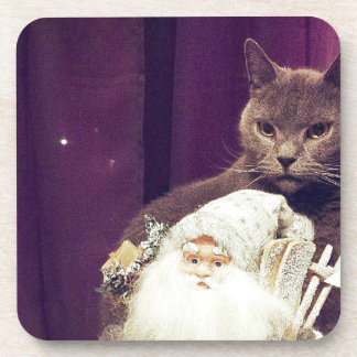 cat with santa claus coaster