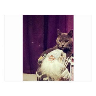 cat with santa claus postcard