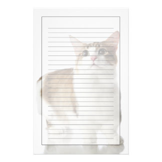 Cat with short feet stationery