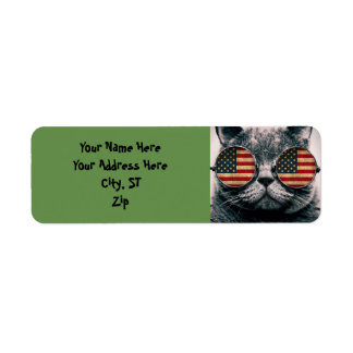 Cat with sunglasses - american flag