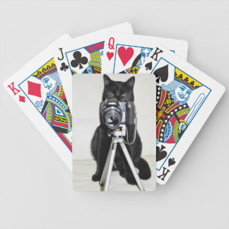Cat with the camera - Playing Cards