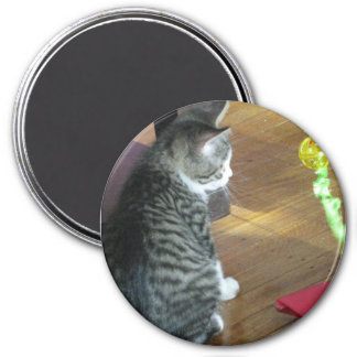 Cat with Toy Photo 7.5 Cm Round Magnet