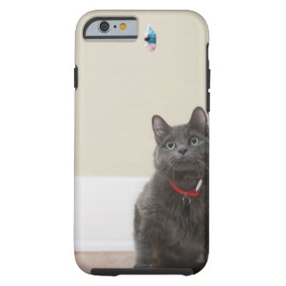 Cat with toy tough iPhone 6 case
