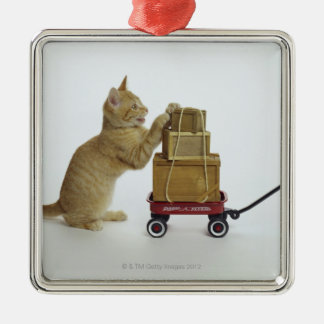 Cat with wagon and boxes Silver-Colored square decoration