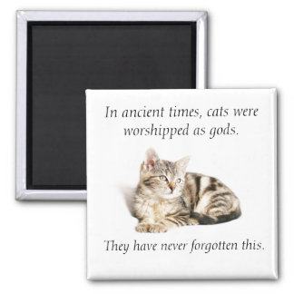 Cat worship square magnet