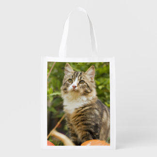 Cat Reusable Grocery Bags