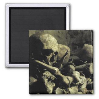 catacomb bones magnet