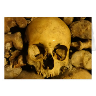 Catacombs in France Card
