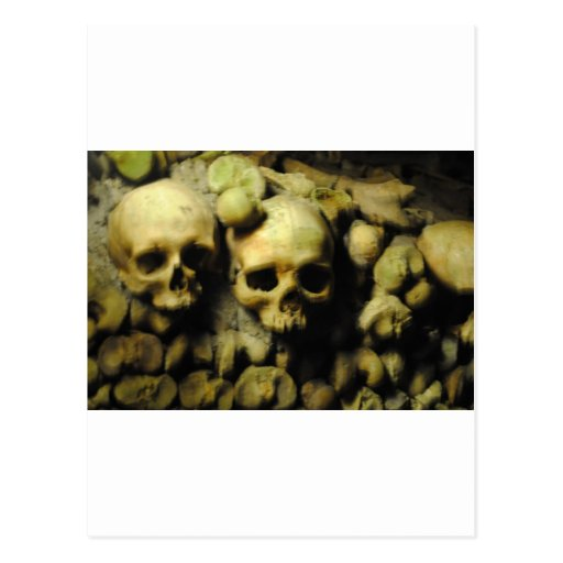 Catacombs in France Postcards