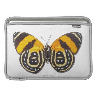 Catagramma cynosura MacBook air sleeves