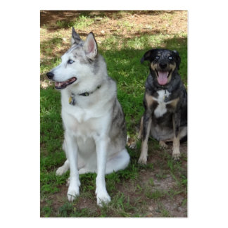 Catahoula and Ausky Dog Buddies Business Card Templates