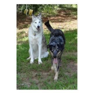 Catahoula and Ausky Dog Buddies Business Cards