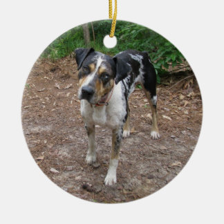 Catahoula Christmas Christmas Ornament