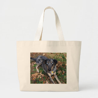 Catahoula Leopard Dog Laying Down Large Tote Bag