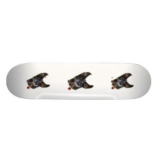Catahoula Pawprint Dog Heart Skateboard Deck