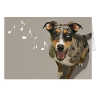Catahoula Singing Card by Focus for a Cause