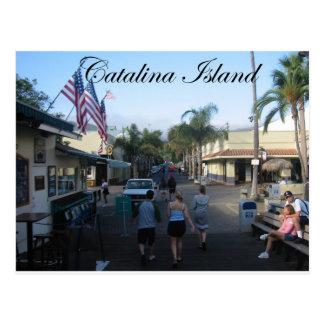 Catalina Island 6 Postcard
