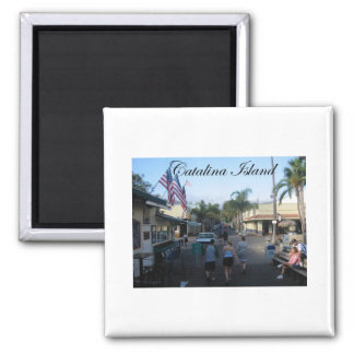 Catalina Island 6 Square Magnet