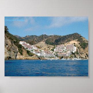 Catalina Island Mountains Poster