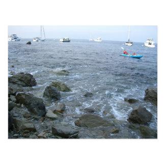 Catalina Island shore Postcard