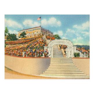 Catalina Postcard
