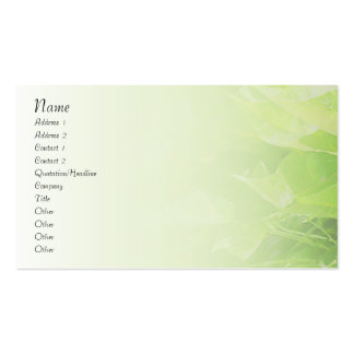 Catalpa Blend Profile Card Pack Of Standard Business Cards