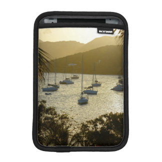 Catamarans and sailboats iPad mini sleeve