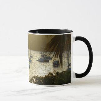 Catamarans and sailboats mug