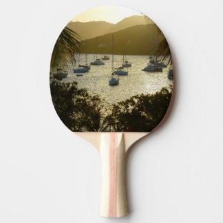 Catamarans and sailboats ping pong paddle