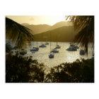 Catamarans and sailboats postcard