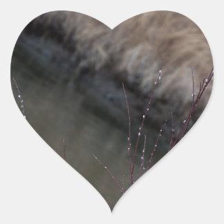 CATC Catkins at the Creek Heart Sticker
