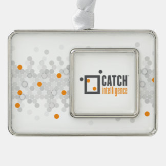 CATCH - Ornament Silver Framed