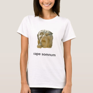 Catch Some zzz's T-Shirt