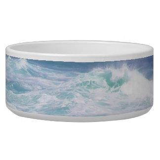 Catch the Wave Pet Bowl