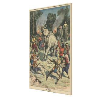 Catching a white elephant in Siam Canvas Print