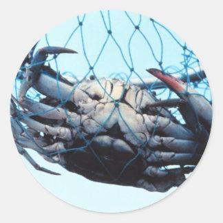 Catching Blue Crab Classic Round Sticker