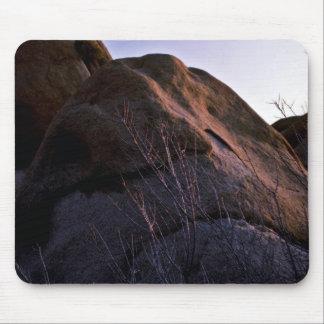 Catclaw Acacia And Boulder Mousepad