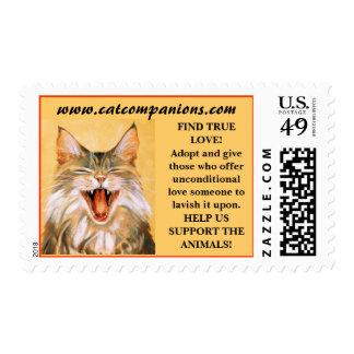 CatCompanions.com Logo copy, FIND TRUE LOVE!Ado... Postage Stamps