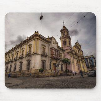 Catedral De Salta Mouse Mat