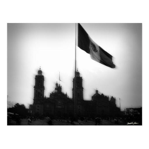 Catedral en el Zocalo del DF con la Bandera 10 Post Card