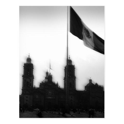 Catedral en el Zocalo del DF con la Bandera 10 Postcard